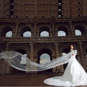 Stunning Cathedral Bridal Wedding Veil of 5 metres long