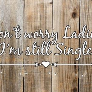 Don't Worry Ladies, I'm Still Single Wedding Pageboy Sign