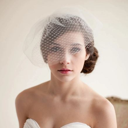 Beautiful Vintage Bird Cage Wedding Bridal Veil | Bride Veil