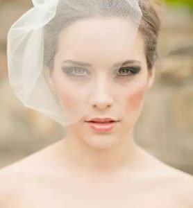Beautiful Bird Cage Wedding Bridal Veil | Bride Veil