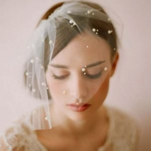 Beautiful Vintage Bird Cage Wedding Bridal Veil   Bride Veil with Pearls